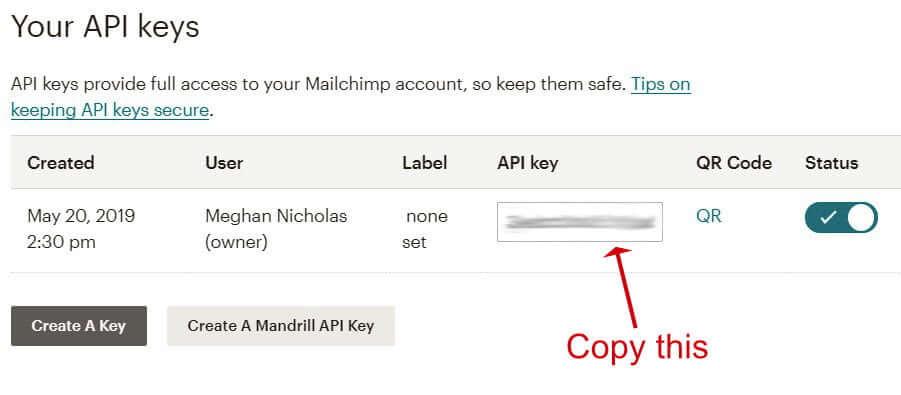 Mailchimp for WordPress - Copy API Key