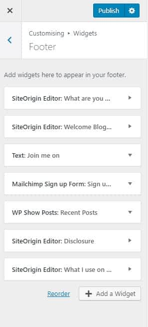 Editing widgets in the WordPress customiser