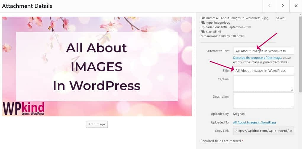 WordPress image properties